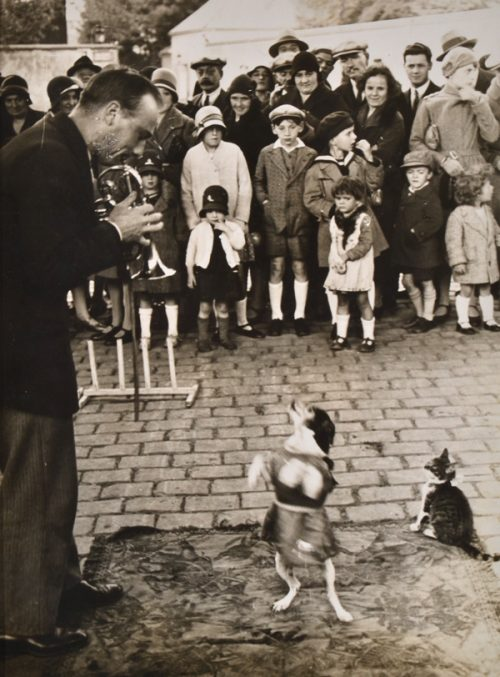 Brassai (Gyula Halasz) (Hungarian-French 1899-1984) Performing Dog 1930's