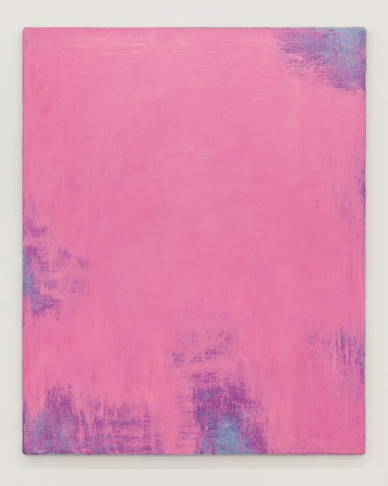 Dianthus-Pink-124-x-154-cm-Pigment,-linseed-oil-and-beeswax-on-linen-$6100