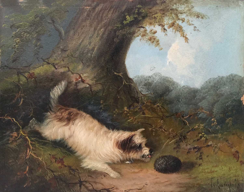 T. LANGLOIS Terrier & Hedgehog